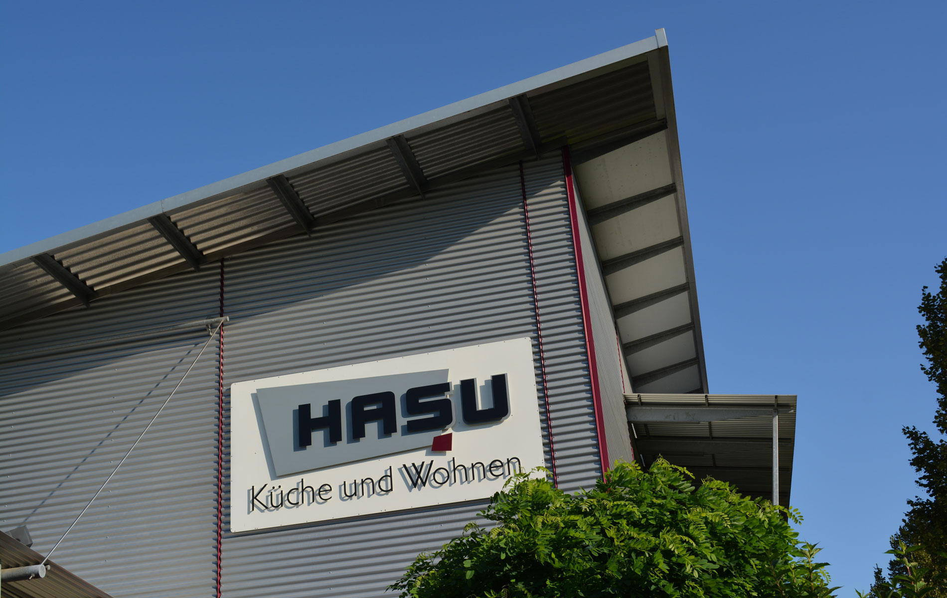 Karriere Hasu